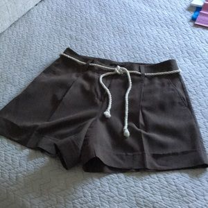 Ann Taylor polished and professional short